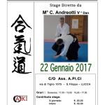 Stage di Aikido con Christian Andreotti