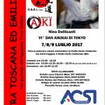Stage di Aikido, Nino Dellisanti, GSAI