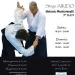 Stage di Aikido , Antonio Mantovanelli, Roma, Kyodai Aikido