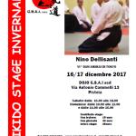 Stage di Aikido, Nino Dellisanti, Pistoia, G.S.A.I