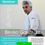Stage di Aikido, Bruno Gonzalez, Roma, Stage di Aikido, Yanagi