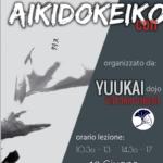 Stage di Aikido, Francesco Dessì, Yuukai, Vittorio Veneto