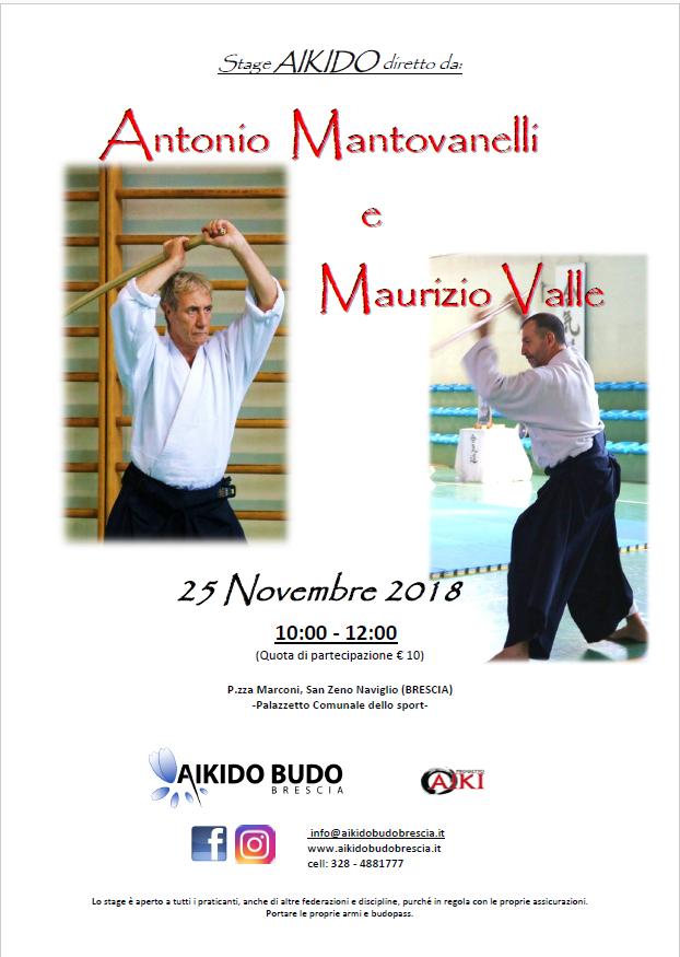 Stage di Aikido, Antonio Mantovanelli, Maurizio Valle, Brescia, ProgettoAiki, Aikido2000, Aikibudo Brescia