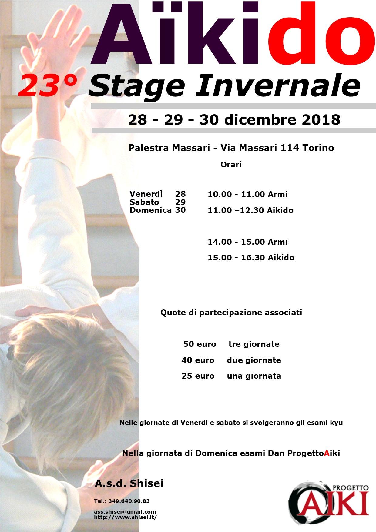 Stage di Aikido, Nino Dellisanti, Shisei, Torino