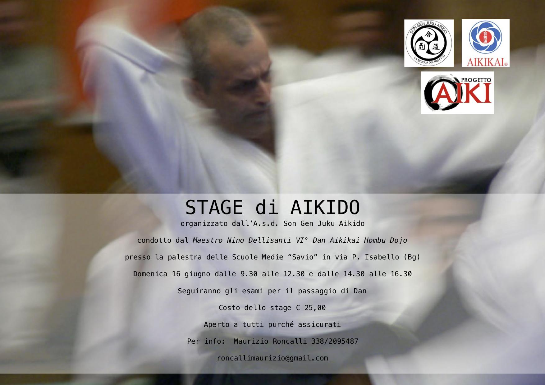 Stage di Aikido, Son Gen Juku Aikido, Nino Dellisanti, ProgettoAIki, Bergamo