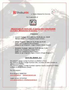 Seminario Multidisciplinare, Shobuaiki, Centro Metamorfosi Sorrento,Bruno Brugnoli, Angelo Armano,