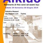 Seminario di fine corsi, esami kyu, Torino, Nino Dellisanti, Shisei