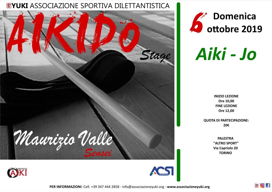 Stage di Aikido, Yuki, Maurizio Valle, Torino