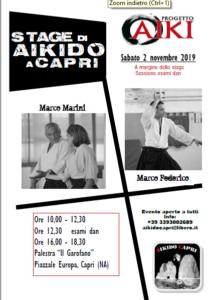 Stage di Aikido, Marco Marini, Marco Federico, Aikido Capri