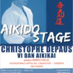 Stage di Aikido, Christophe Depaus, Marici Dojo, Caserta
