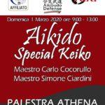 Aikido Special Keiko, M° C. Cocorullo M° S. Ciardini, Scandicci FI, Aikido budo Defens Marzial Art